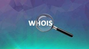 Domain WHOİS Sorgulama